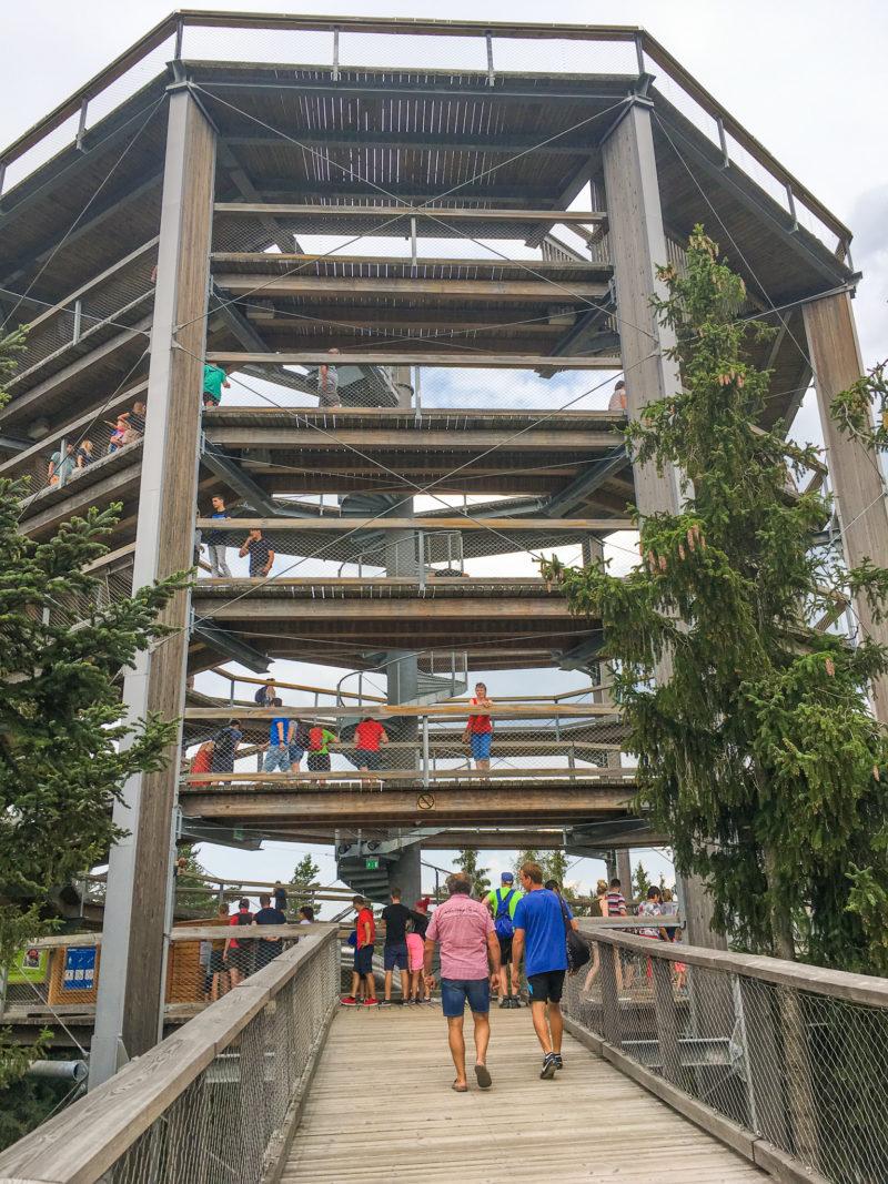 Lipno treetop walk